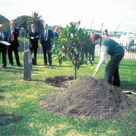 René Block planting a tree as part of Joseph Beuys' 7000 Oaks for the 5th Biennale of Sydney (1984) at the Art Gallery of New South Wales